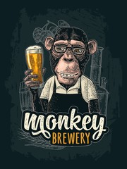 Monkey dressed apron hold beer glass. Vintage color engraving