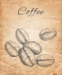Hand drawn coffee beans on old paper background