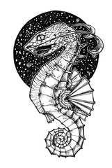 The body from Sea Horse, the head from snake. Strange fantastic creature. A fictional being. Fantasy illustration. Can be used like cover, background, tattoo.