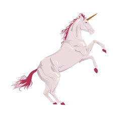 Vector illustration unicorn.