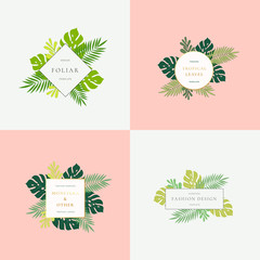 Set of Monstera Tropical Leaves Fashion Signs or Logo Templates. Abstract Foliage with Golden Borders and Classy Typography. Pastel Backgrounds.