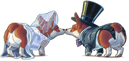 Corgi Bride and Groom Kissing Cartoon Illustration