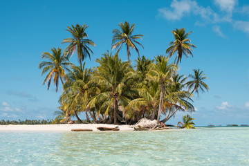 In de dag Eiland Small Island, beach and palm trees - San Blas Islands, Panama