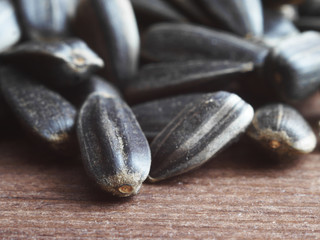 Black sunflower seeds close-up. Macro photo.