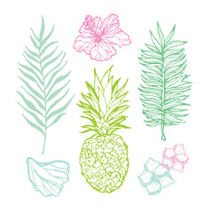 Hand drawn doodle tropical palm leaves