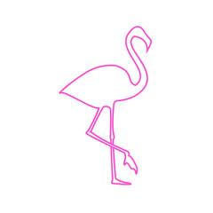 Flamingo illustration. Vector