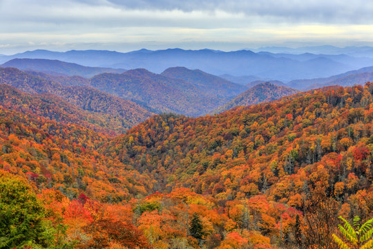 Autumn colors in Great Smoky Mountains National Park along the North Carolina-Tennessee border