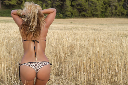 Rear view of a beautiful woman sitting on corn field.