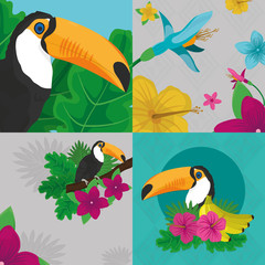 Tropic leaves flowers and toucan design