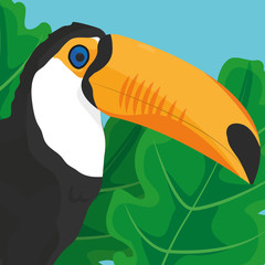 Tropic leaves and toucan design