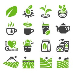 green tea,tea icon