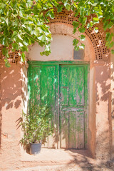 ancient wooden green door of house built with bricks and adobe, with plants, in old town of Ayllon village, Segovia, Spain, Europe