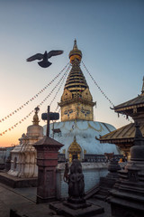 Kathmandu, Nepal - November 8, 2017: The Swayambhunath Stupa (Monkey Temple). On the territory of the Buddhist temple live hundreds of monkeys