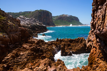 Featherbed Nature Reserve, Knysna, South Africa,