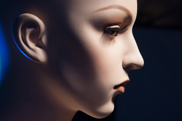 Female head of a dummy. The face of the girl in profile. Plastic mannequin.