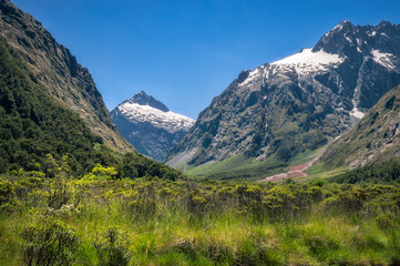 Mountain View at Gertrude Valley on the way to Milford Sound, New Zealand.