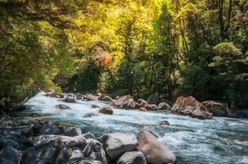 Beautiful Sun Light over Cleddan River at Darran Mountain in Fiordland National Park on the way to Milford Sound in New Zealand