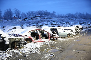 Car Graveyard #5