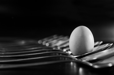 the egg in the spoon