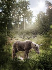 Little unicorn stands in a glade