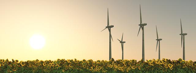 Windkraftanlagen, Sonnenblumen und Abendsonne