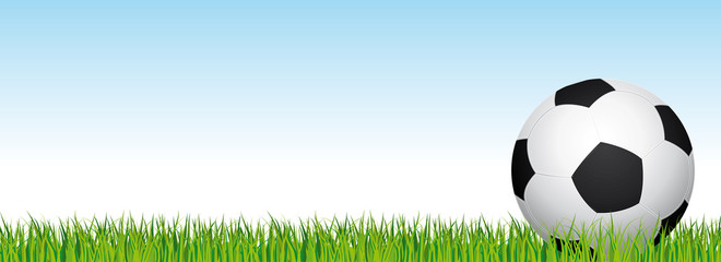 Soccer banner. Football stadium grass and blue sky background. Vector header with soccer ball on the right side.