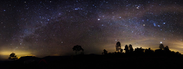 Milky way panorama over the forest.