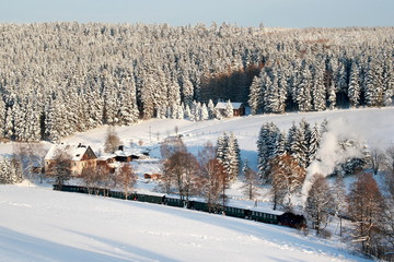 Dampflock in Winterlandschaft