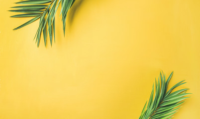 Flat-lay of green palm branches over yellow background, top view, copy space, wide composition....