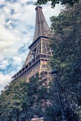 Fototapete - Eiffel tower viewed from the Champ de Mars