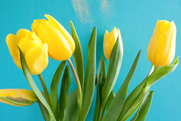 Bouquet of yellow tulips on turquoise painted wooden background.