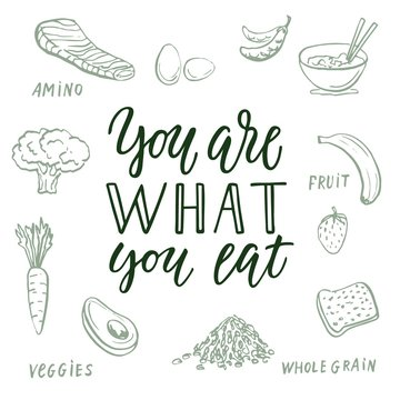 You are what you eat! Calligraphic quote and food drawings on background.