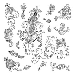 Paisley. Ethnic ornament. Vector hand drawn elements