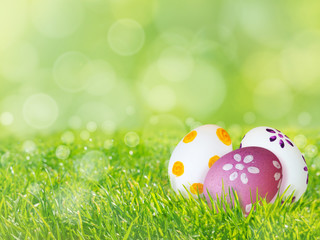 Painted Easter eggs on the green grass lawn spring background