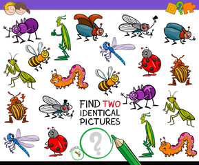 find two identical cartoon insects game for kids
