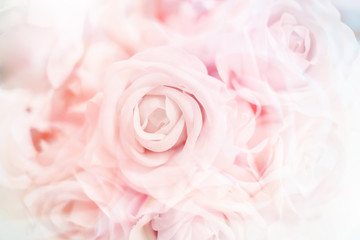 romance and sweet flower abstract background with color filter effect