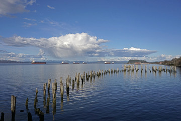 Cargo ships at anchor in the East Mooring Basin at Astoria, Oregon