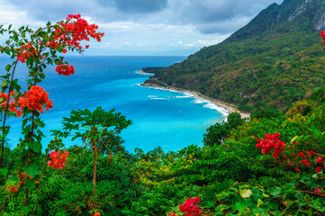 Scenic natural wild landscape with rocky mountains overgrown dense green jungle tree, palm and clear azure water of sea ocean