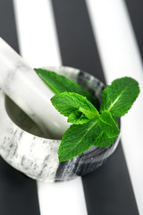 the branch of fresh mint lies in a marble mortar on  a plastic support in a black-and-white strip