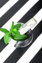 the branch of fresh mint lies in a marble mortar on a white background on a plastic support in a black-and-white strip