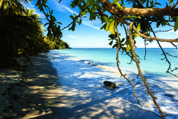 Landscape of the beach of the Cahuita National Park, Costa Rica