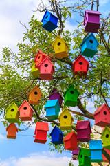 Many bright colored birdhouses on a mandarin tree