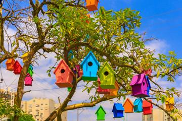 Colored birdhouses on a mandarin tree