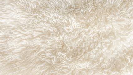 White soft wool texture background, seamless cotton wool, light natural sheep wool, close-up texture of white fluffy fur, wool with beige tone for designer
