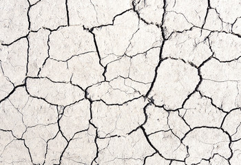 White cracked earth texture background