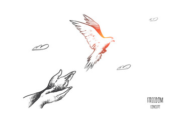 Freedom concept. Hand drawn pigeon flying out of two hands. Freedom of life, free bird enjoying nature isolated vector illustration.