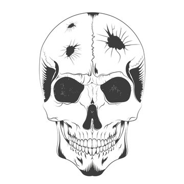 vector illustration of a skull sketch with holes of different diameters in the head. t-shirt design, poster, ticket and others