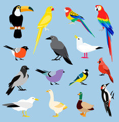 Vector bird icon collection.