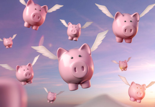 fliegende Sparschweine Abendrot