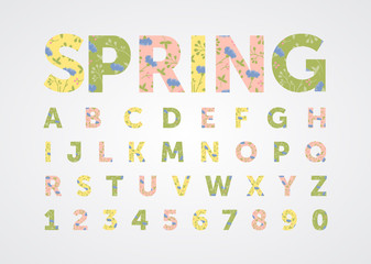 spring font, alphabet of flowers, cornflowers, greens, letters for summer text